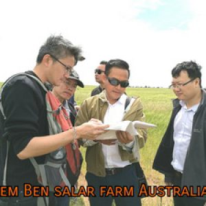Tailem Ben solar fram,Australia.
